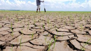 El gasto estatal en lucha contra el cambio climático cae en picado
