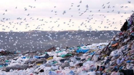 Alianza Residuo Cero reclama al Gobierno que no ceda ante la industria del plástico
