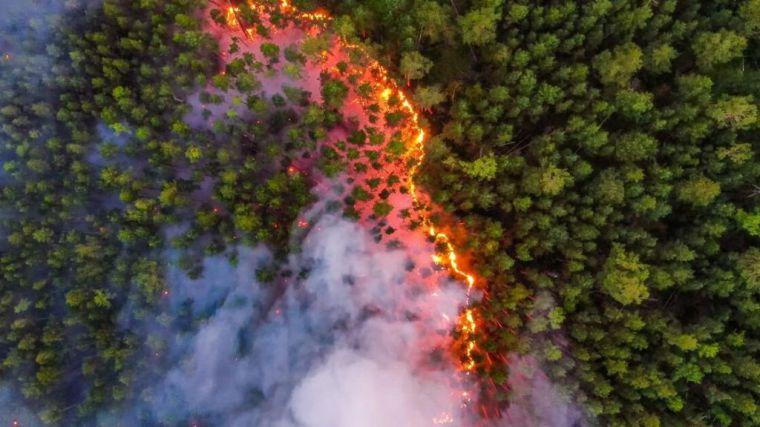 Los incendios forestales se ceban con Siberia