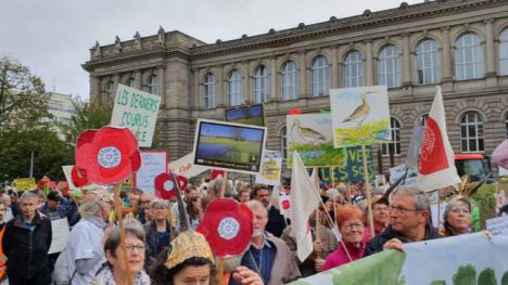 Más de 400 organizaciones europeas piden una PAC verde y justa