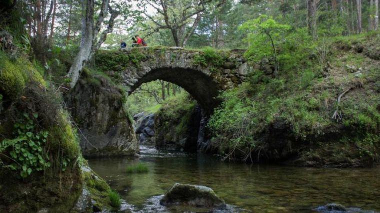 Ecologistas en Acción solicita la expropiación del Pinar de los Belgas por estos motivos