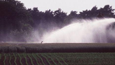 Una oportunidad perdida para garantizar la transición hacia la agroecología y salvar el medio rural