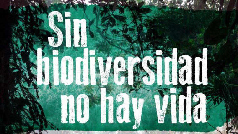 Ecologistas en Acción denuncia que el Gobierno español 'infravalora la pérdida de biodiversidad'