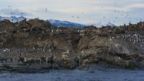 Canal Beagle: Argentina y Chile avanzan en el estudio del cambio climático