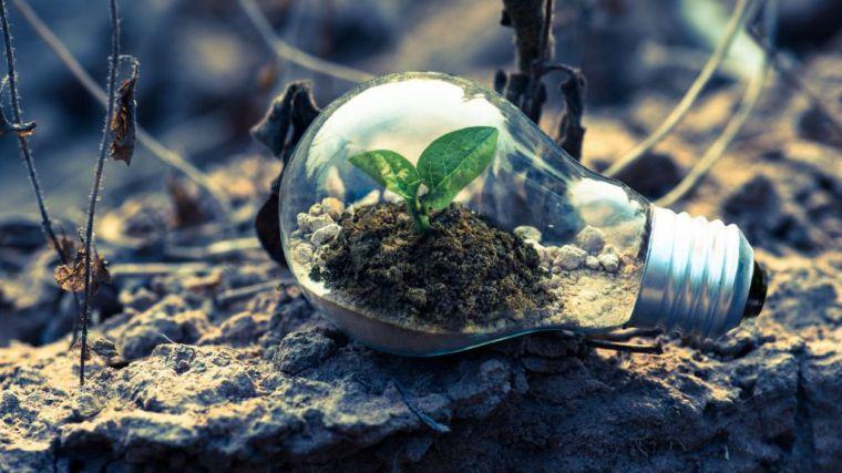 WWF pide a los líderes mundiales más ambición durante estos meses para salvar el planeta