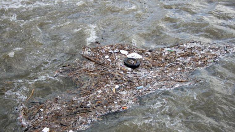 Una grave problemática medioambiental de la que apenas se habla