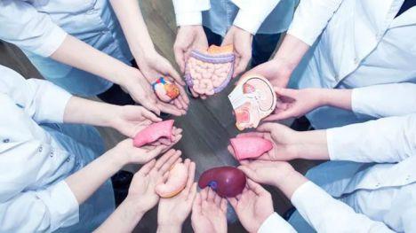 España es líder mundial en donación de órganos