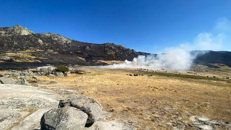 WWF se pronuncia sobre la declaración de 'Zona catastrófica por incendios forestales'