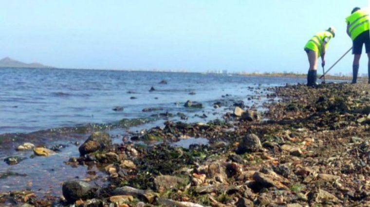 El Mar Menor está en peligro de desaparición